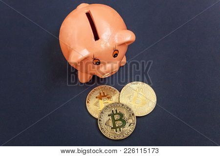 Piggy Bank And Golden Bitcoin Coin Virtual Money On Black Background. Cryptocurrency And Saving Conc