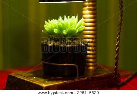 Light Fixture Handmade - Stand For Flower Pot In Vintage Style, Wooden Case, Copper Fittings, Led La