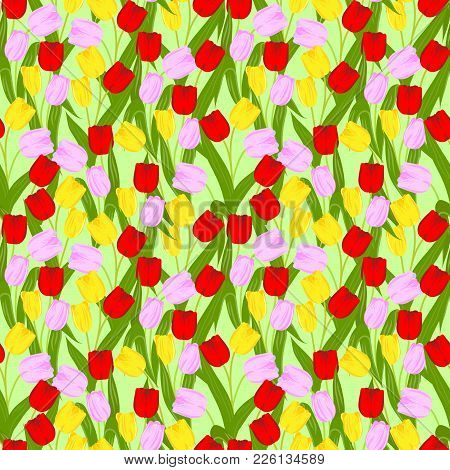 Seamless Pattern With Spring Flowers, Bright Blooming Tulips, Vector Illustration