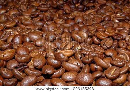 Close Up Photo Of Roasted Coffee Beans As A Background