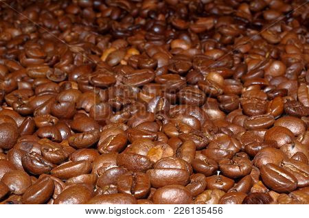 Close-up Photo Of Roasted Coffee Beans As A Background