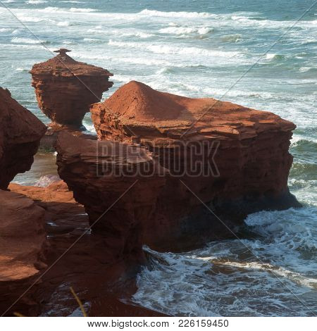 The cup of tea at thunder cove beach during high tide in Prince Edward island in CanadaThunder cove beach during high tide in Prince Edward island in Canada