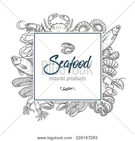 Vector Frame Template Hand Drawn Seafood Design With Mussel, Fish Salmon, Shrimp. Lobster, Squid, Oc