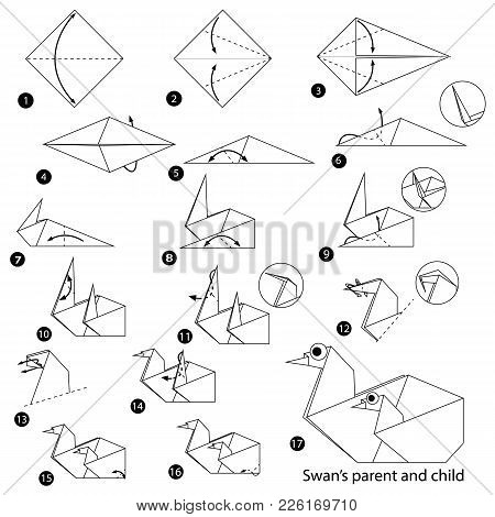 Step By Step Instructions How To Make Origami A Swan Parent And Child