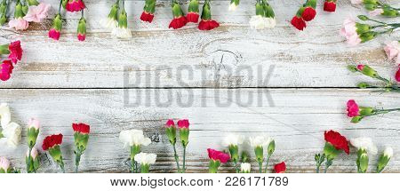 Colorful Carnations Forming Rectangle Shape Border On White Weathered Wooden Boards