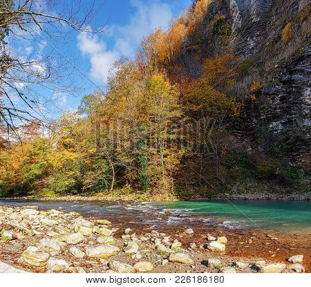 Along The River Khosta There Is A Small But Very Picturesque Canyon And An Ancient Forest Grows, In