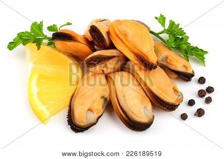 Mussel With Parsley Leaf Peppercorns And Lemon Isolated On White Background.