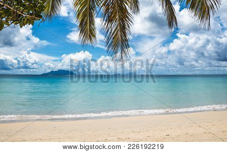 Tropical Island Beach. Sea, Sky And Palm Tree. Perfect Vacation Background.