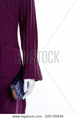 Mannequin In Female Cardigan, Copy Space. Close Up Women Knitted Sweater And Wallet, Cropped Image.