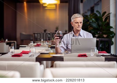 Pleasant Evening. Concentrated Earnest Mature Man Holding Wine While Staring At The Laptop And Resti