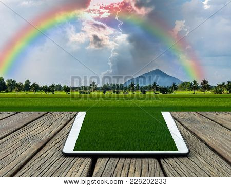 Conceptual Image Of A Tablet On Beautiful Nature View,mountain With Rice Field And Rainbow
