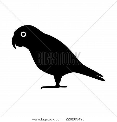 Senegal Parrot Silhouette Icon In Flat Style. Exotic Tropical Bird Symbol Isolated On White Backgrou