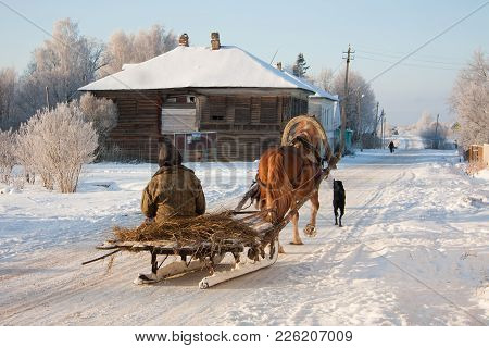 The Man Goes On Sledge To Which The Horse, In The Snow Zainevely Village Is Harnessed