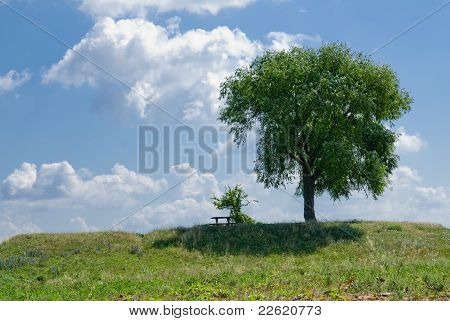 Tree On A Background Of Clouds
