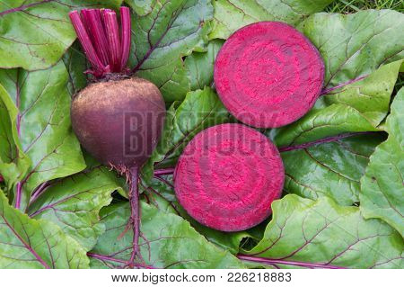 Raw Beetroot Sliced On Leaves. Top View , Copy Space.