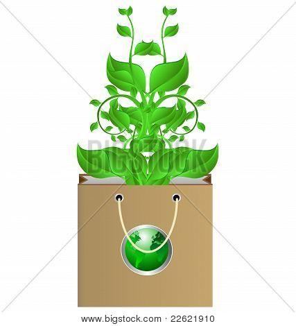 Bag And Plant
