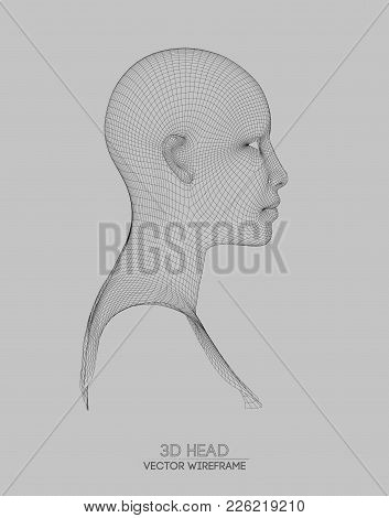 3d Head Wireframe Vector & Photo (Free Trial) | Bigstock