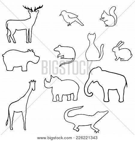 Outline Wild Animal Vector. Deer, Hippopotamus, Bird, Rat, Cat, Rabbit, Rhino, Squirrel, Elephant, G