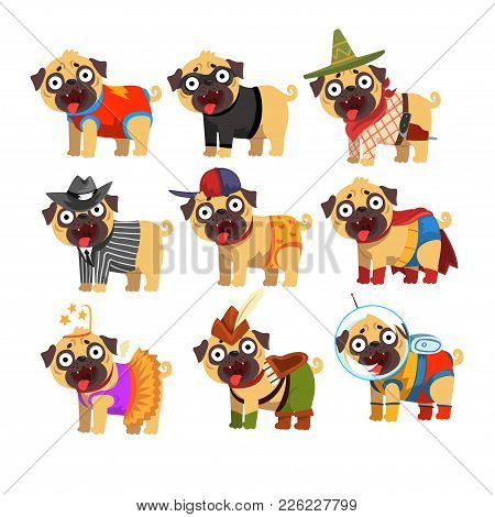 Cute Funny Pug Dog Character In Colorful Funny Costumes Set, Vector Illustrations On A White Backgro