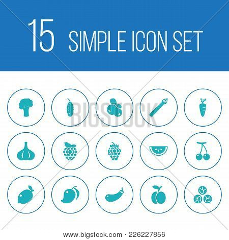 Set Of 15 Vitamin Icons Set. Collection Of Carrot, Garlic, Berry And Other Elements.