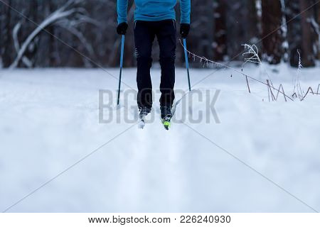 Image Of Skier On Background Of Trees In Winter Day