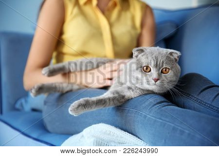 Young woman with cute pet cat at home