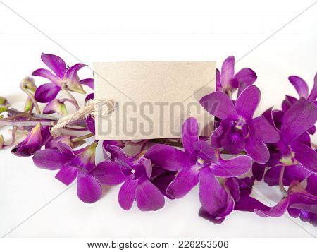 Beautiful Of Purple Orchids With A Blank Gift Tag For Valentines Or Anniversary Message On White Bac