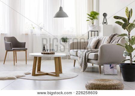 Armchair In Cozy Living Room