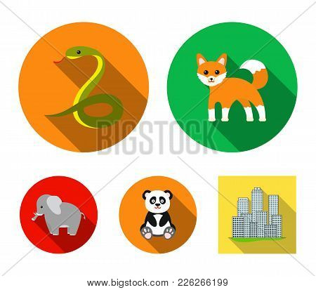 Panda, Elephant, Snake, Fox.animal Set Collection Icons In Flat Style Vector Symbol Stock Illustrati