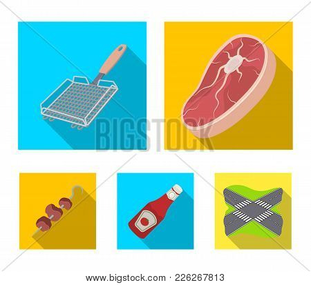 Raw Meat Steak, Grill With Handle, Bottle Of Ketchup, Shish Kebab.bbq Set Collection Icons In Flat S