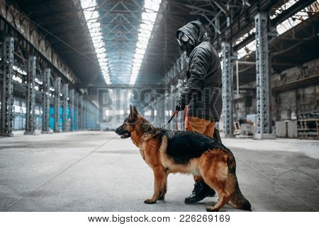 Stalker in gas mask and dog in abandoned building