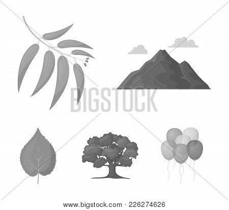 Mountain, Cloud, Tree, Branch, Leaf.forest Set Collection Icons In Monochrome Style Vector Symbol St