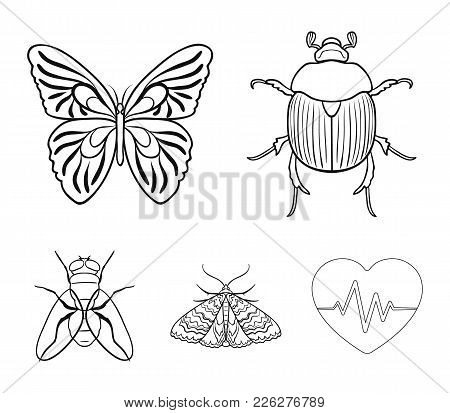 Wrecker, Parasite, Nature, Butterfly .insects Set Collection Icons In Outline Style Vector Symbol St