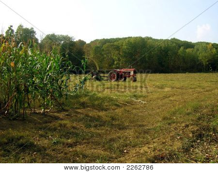 Harvester Tractor in Autum Corn Field