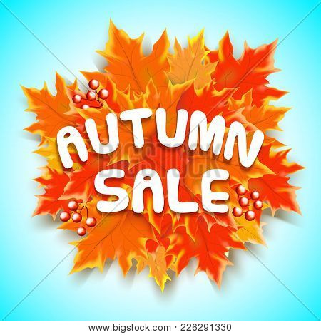 Autumn Sale Text Banner With Colorful Seasonal Fall Leaves In Blue Background For Shopping Discount