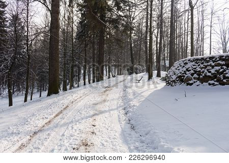 The Winter Road.