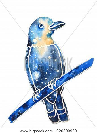 Watercolor Hand Painted Decorative Bird With Space Coloring. Illustration Of A Bird Isolated On Whit