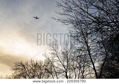 Small Silhouette Of A Plane On Cloudy Sky Netween Trees During Sunset From Below At Park