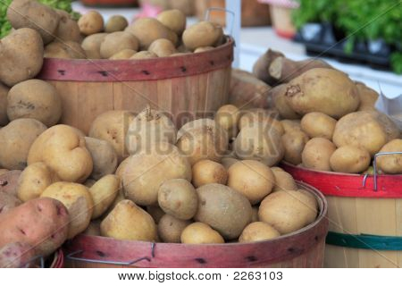 Bushels Of Potatoes