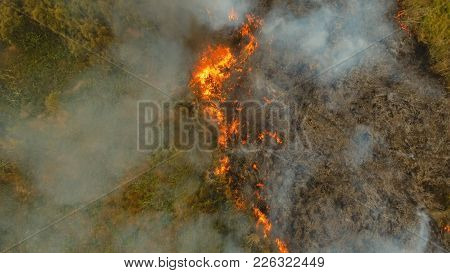 Aerial View Forest Fire On The Slopes Of Hills And Mountains. Forest And Tropical Jungle Deforestati