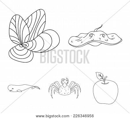 Electric Ramp, Mussels, Crab, Sperm Whale.sea Animals Set Collection Icons In Outline Style Vector S