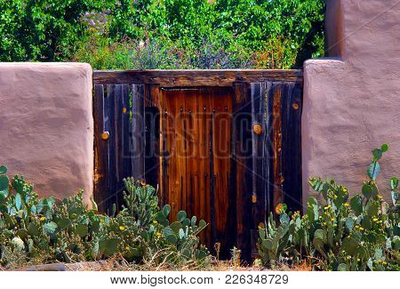 Rustic Wooden Door Is Framed By Pink Adobe Walls.  This Entrance To A Garden Is Surrounded By Bloomi