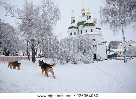 St. Nicholas Cathedral, Nizhyn, Ukraine Covered Snow. St. Nicholas Church Become A Prototype Ukraini