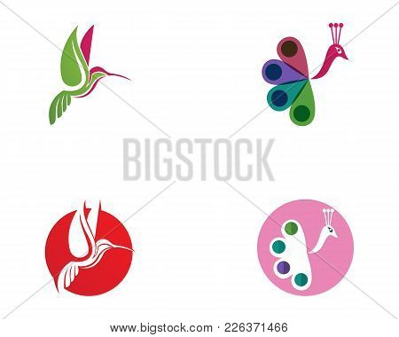 Hummingbird Logo And Symbols Iconstemplate App