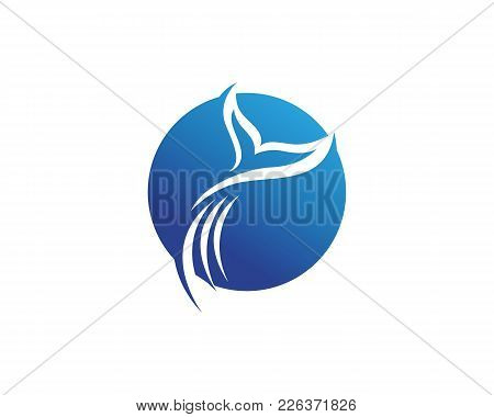 Dolphin Fish Logo And Symbols Animals