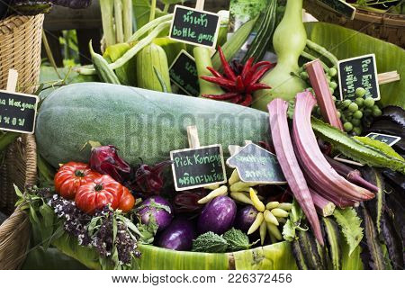 Harvesting Many Fresh Vegetables And Fruits And Homegrown Vegetable For Show And Sale For Thai Peopl