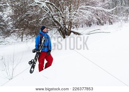 Happy Snowboarder Stands In The Winter Forest After Snowfall, Admiring Winter Landscape And Enjoying
