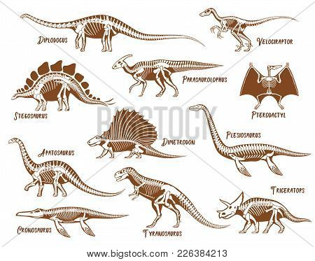 Dinosaurs Decorative Icons Set With Description Text In Hand Drawn Style Isolated Vector Illustratio