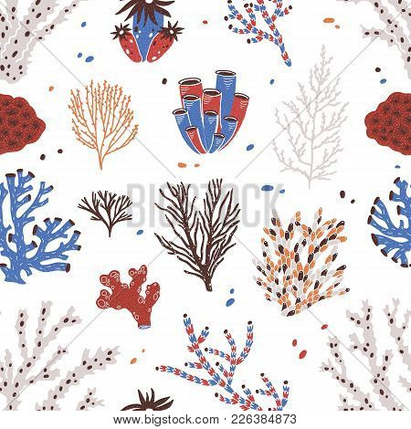 Seamless Pattern With Various Corals And Seaweed Or Algae On White Background. Backdrop With Beautif