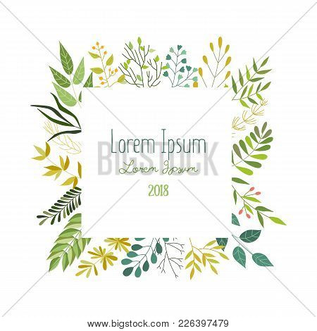 Square Frame Of Green Leaves, Twigs And Herbs With Place For Text, Banner, Greeting Card, Eco Logo D